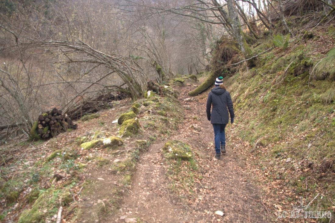 Ahora el camino asciende con fuerza hacia la cascada.