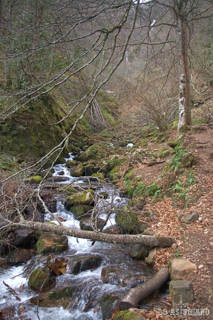 Río Barranco de la Verde, Teverga.
