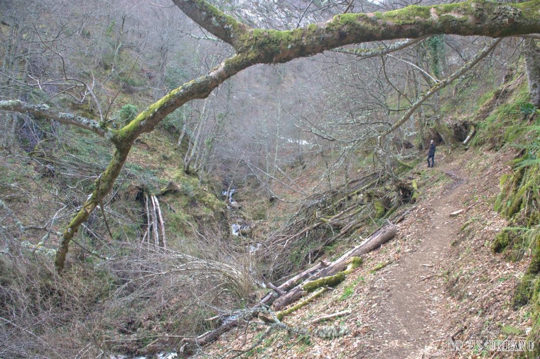 Precios marco natural camino al Xiblu.