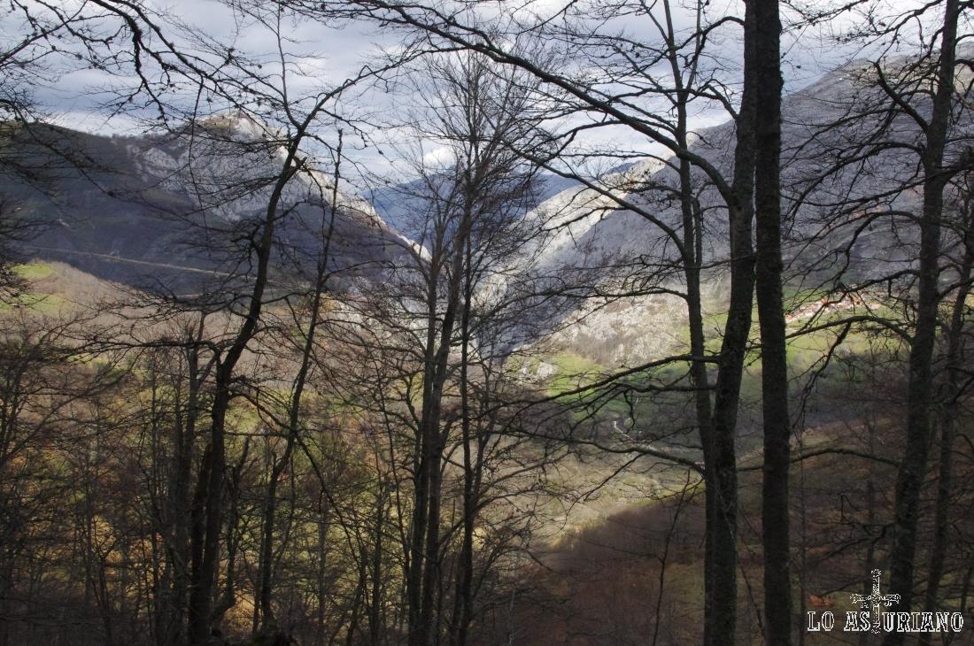 El bosque pelado nos muestra el valle del río Paramo.