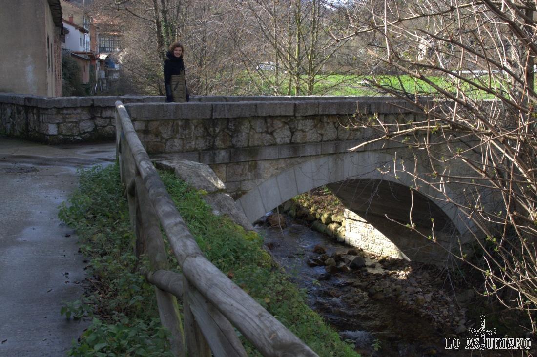 Puente sobre el río Val de Carzana, en San Martín de Teverga.