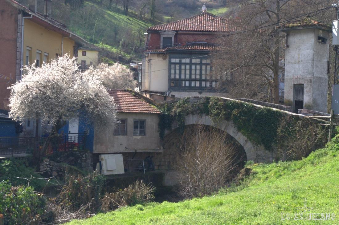 Precioso puente de piedra sobre el río Valdecarzana.