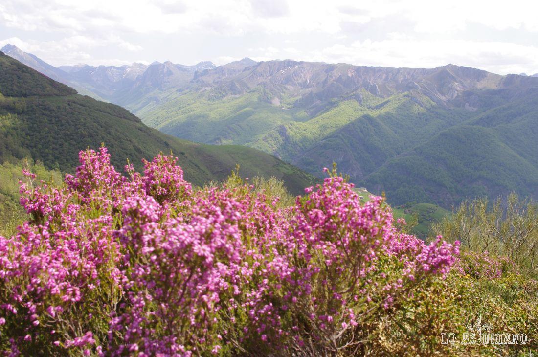 Valle de Saliencia en primavera.