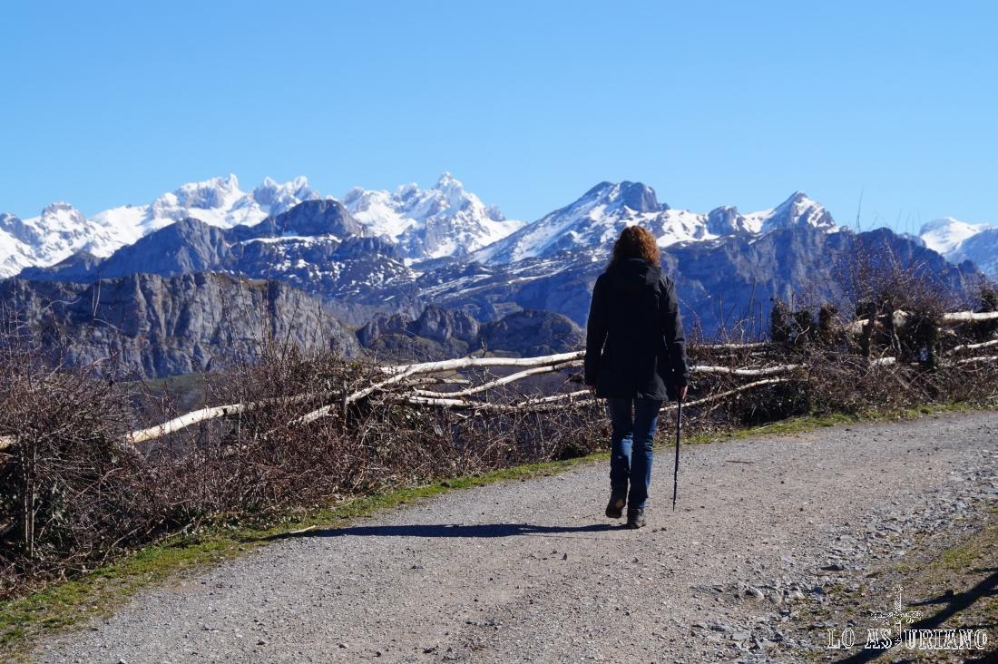 Impresionante vista del macizo occidental de los Picos de Europa, camino del bosque de Peloño.