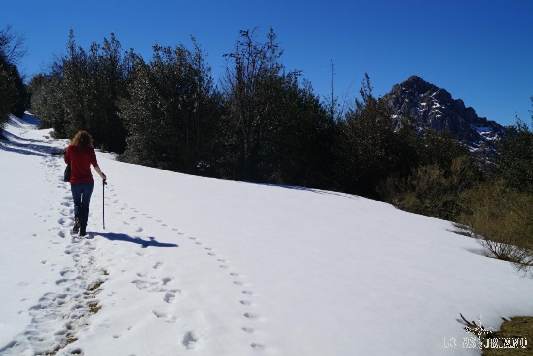 Zona de nieve y acebos, y delante el Recuencu.