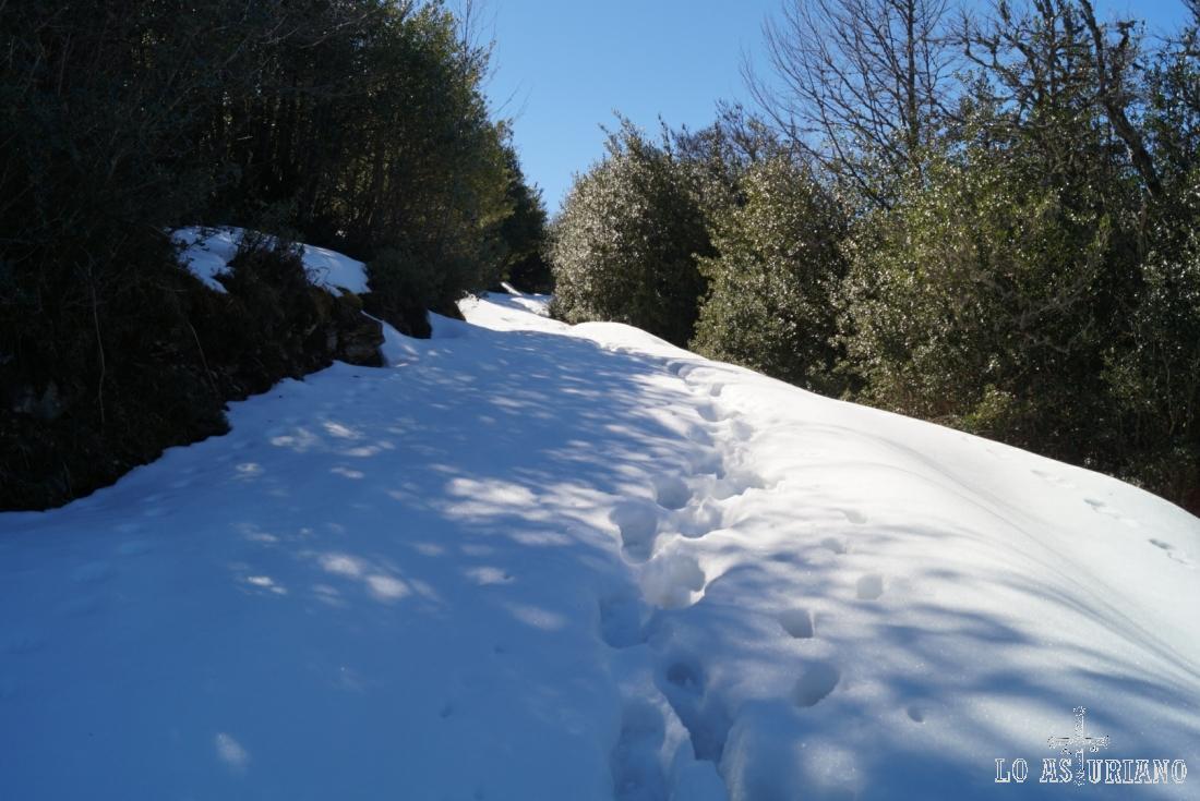 En un día muy soleado de marzo, la nieve fresca se hizo agradable.