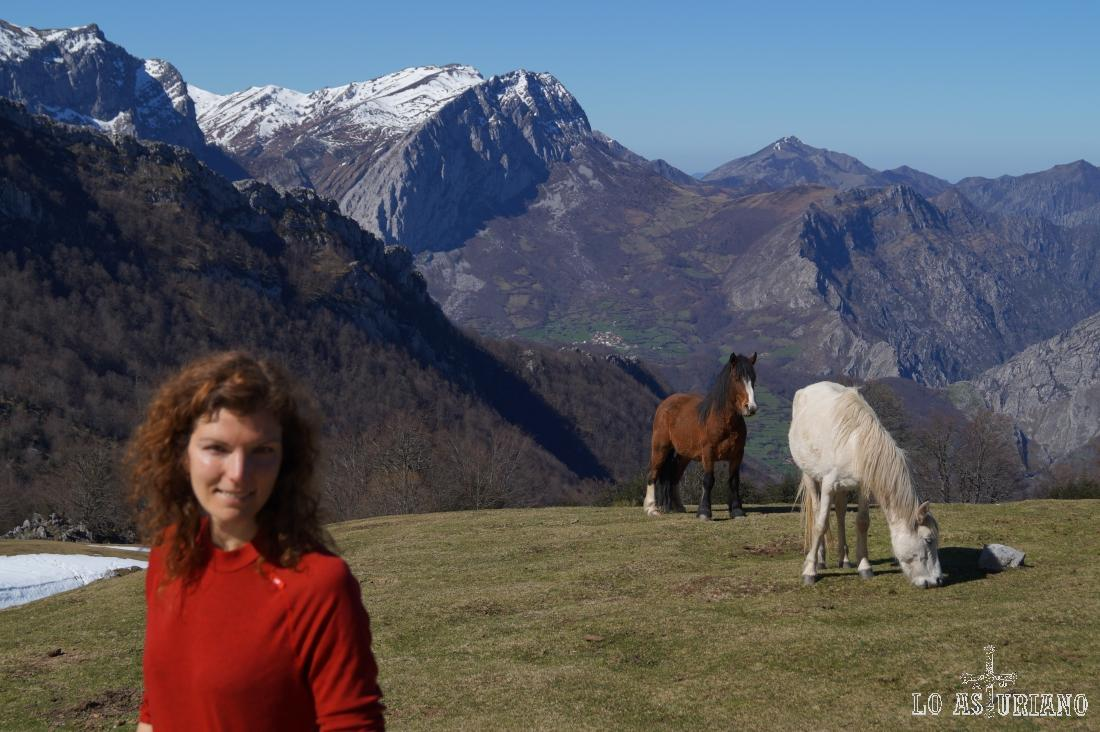 Espléndidos caballos en Les Llampes.