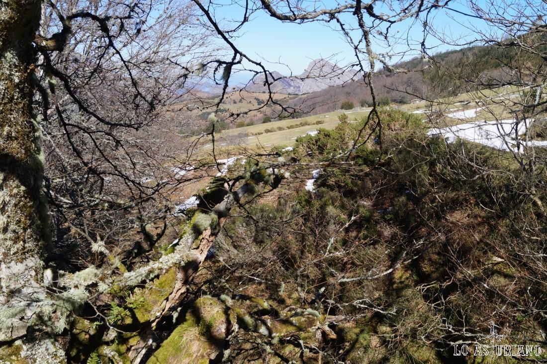 El Carriá y los bosques del Rasu.