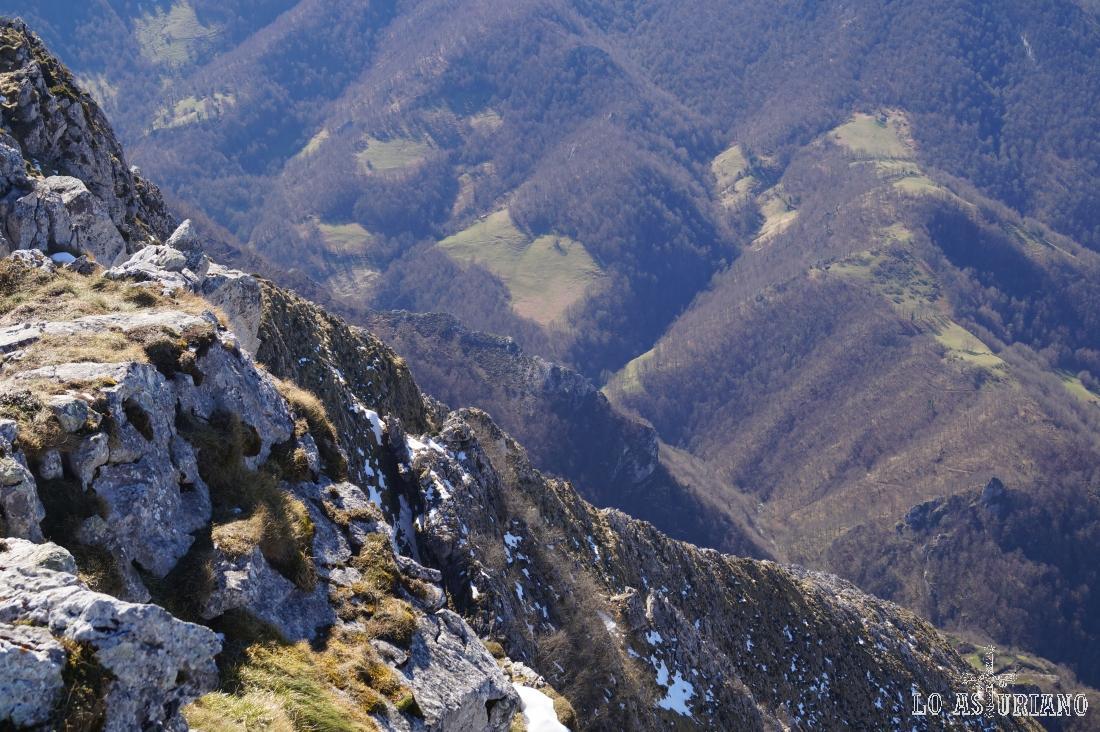 Los hayedos del monte Robléu desde el pico Recuencu.