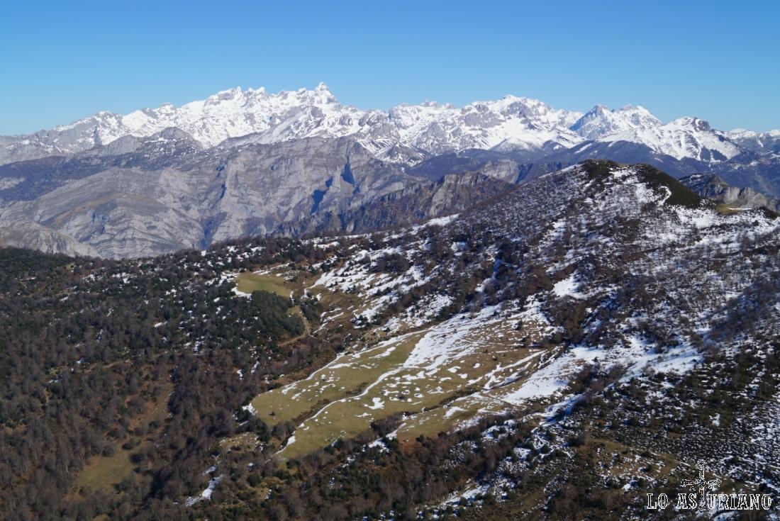 Vistas de los hayedos ponguetos, de los Picos de Europa, desde el pico Recuencu, en el Parque Natural de Ponga.
