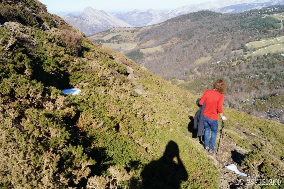 La Mota, con 1399 metros y los bosques del entorno de Les Llamargues de la Mota, a la izquierda. A la derecha, asoma la pradería de Les Llampes.