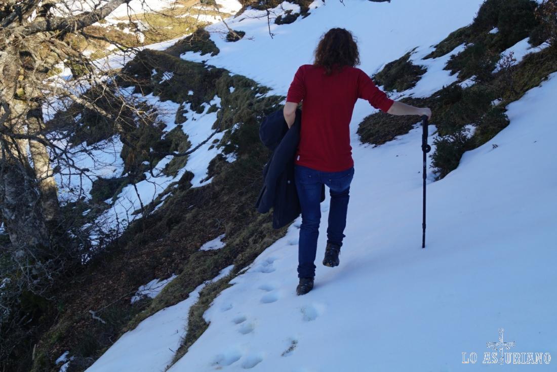 Laderas inclinadas y con nieve.