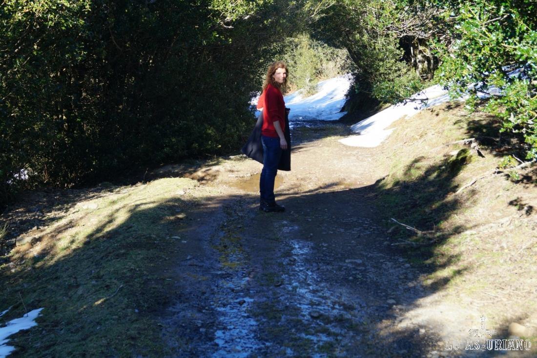 Aquí tenemos la senda, que ya tomamos hasta confluir con la pista del bosque de Peloño.