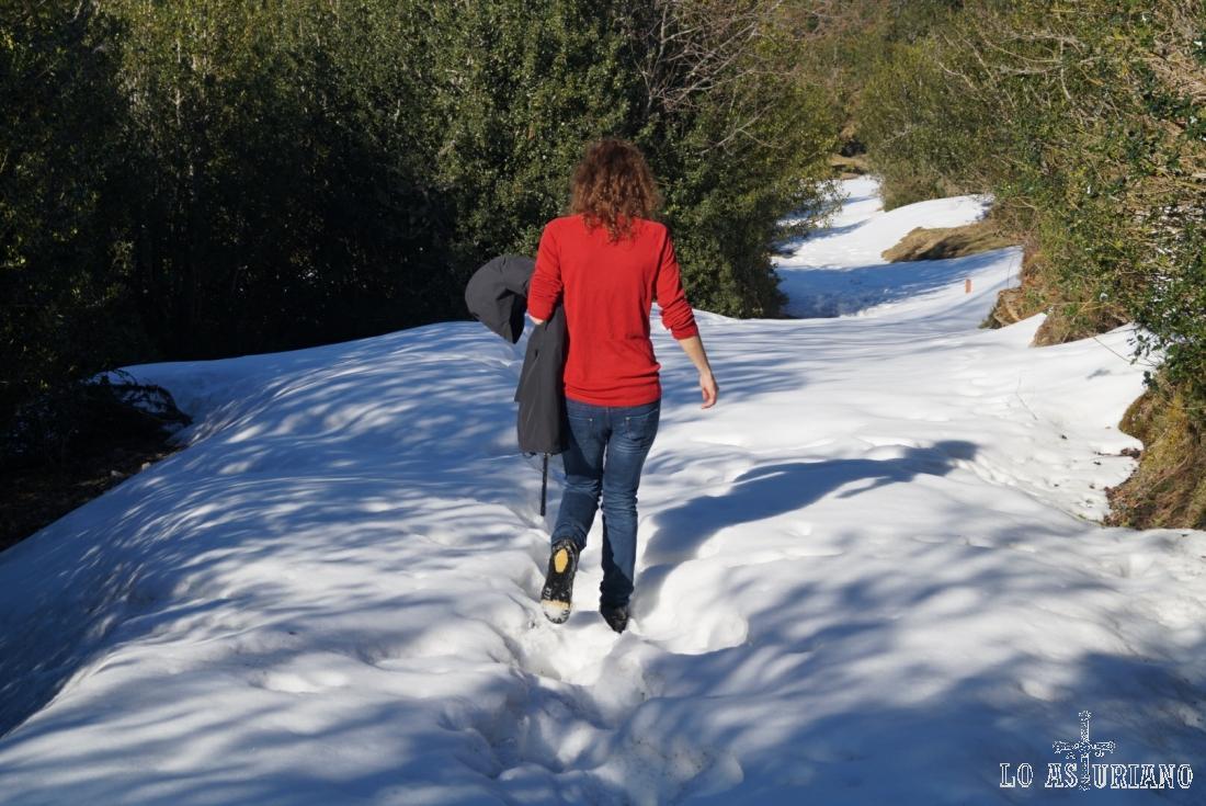 Buena capa de nieve.