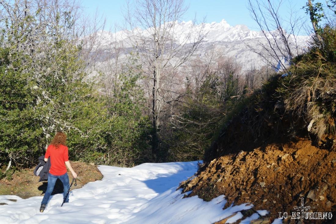 Bajando por la pista, que en tramos tiene mucha nieve, con los Picos al fondo.