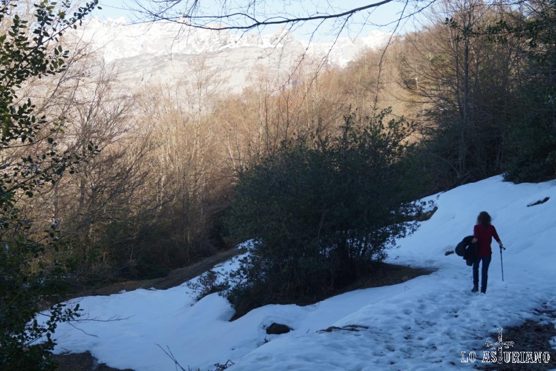 Un buen manto de nieve.