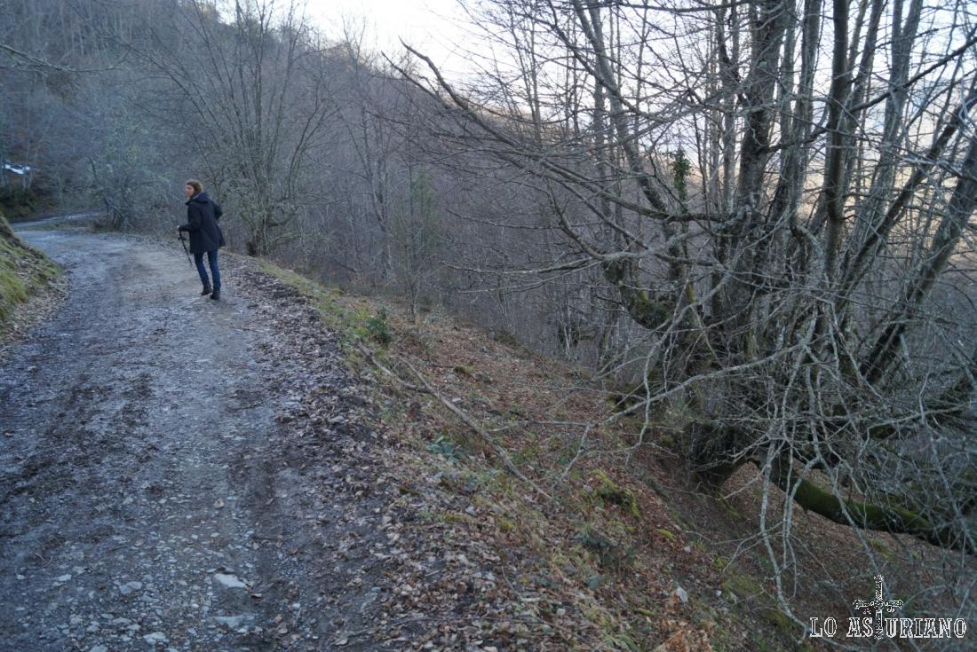 Atravesando Peloño por la pista.