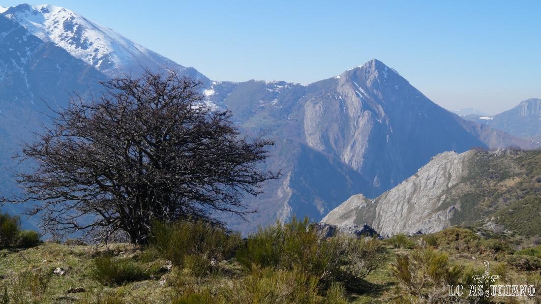 La peña Mochada y a su izquierda el Mocosu, dos cimas del valle de Somiedo.