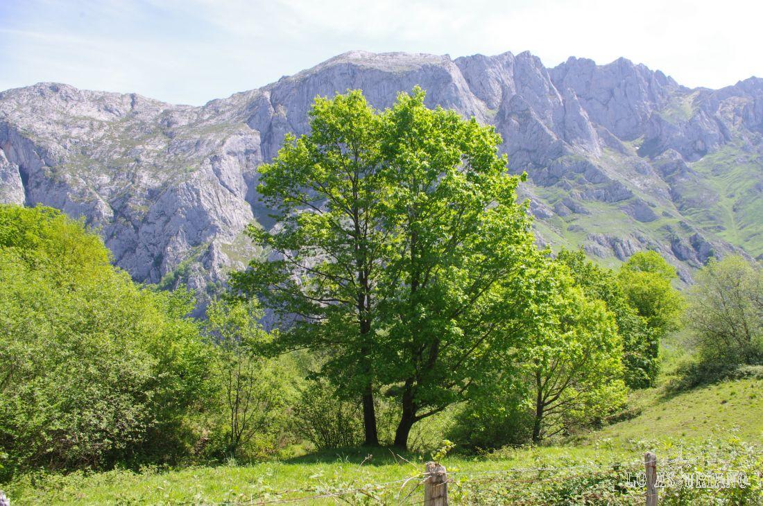 Valle de Angón.