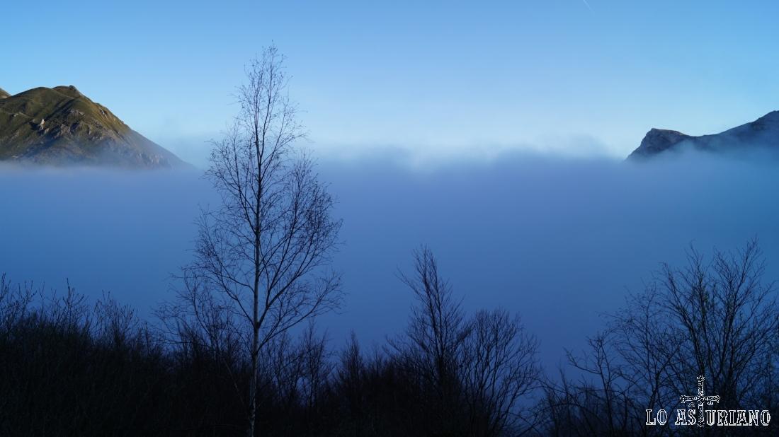 Saliendo de la niebla que cubre el valle de Somiedo.