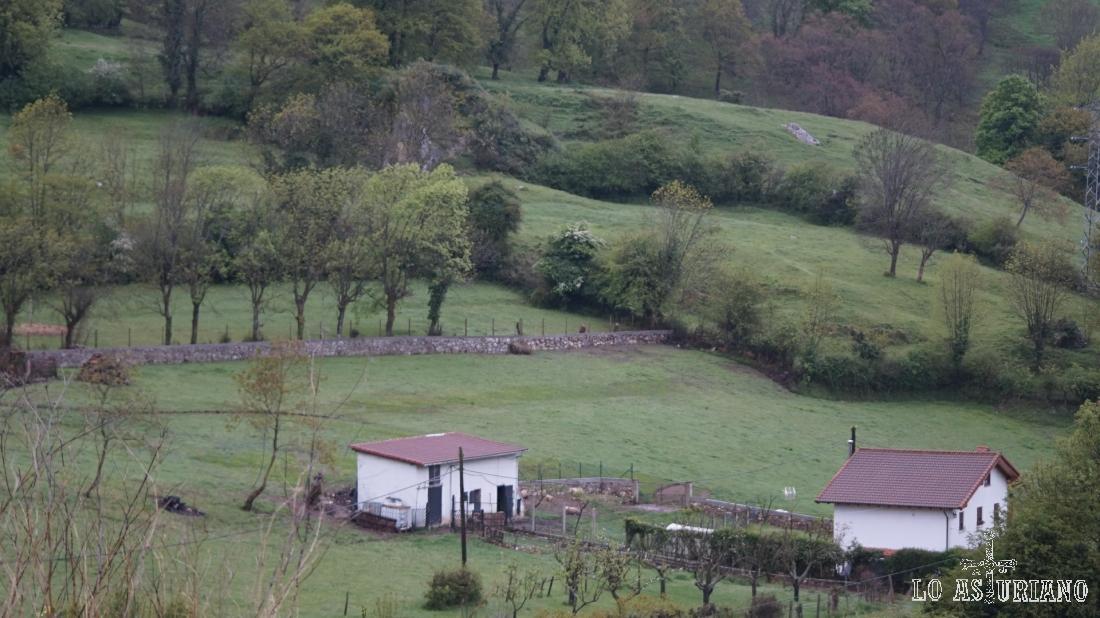 Casas en la zona de La Favorita.