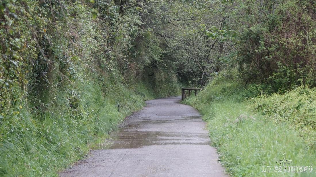 La senda del oso, que tomaremos en este tramo, es una deliciosa pista, por donde transitaba el antiguo tren minero.
