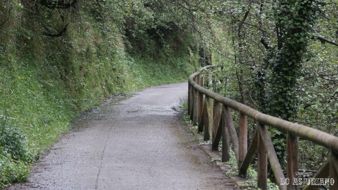 La senda del oso tiene un muchas zonas una baranda de madera.