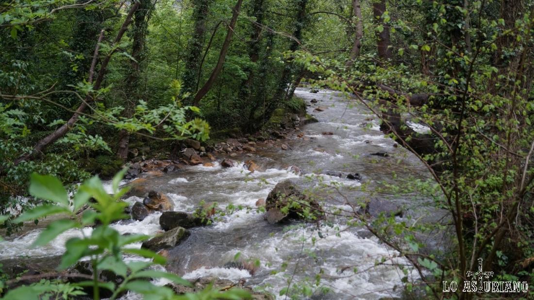 El río Teverga, precioso entorno natural, que nos acompañará hasta el desvío de subida a Fabar.