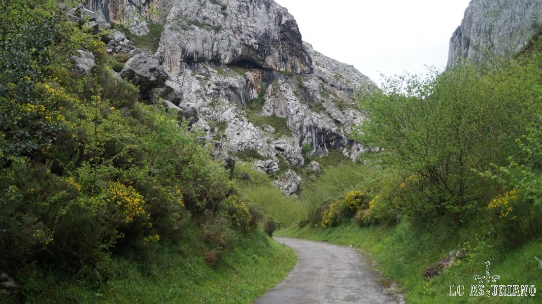 Las paredes de la sierra de Sobia y de Gradura encierran la senda, en este espectacular tránsito.