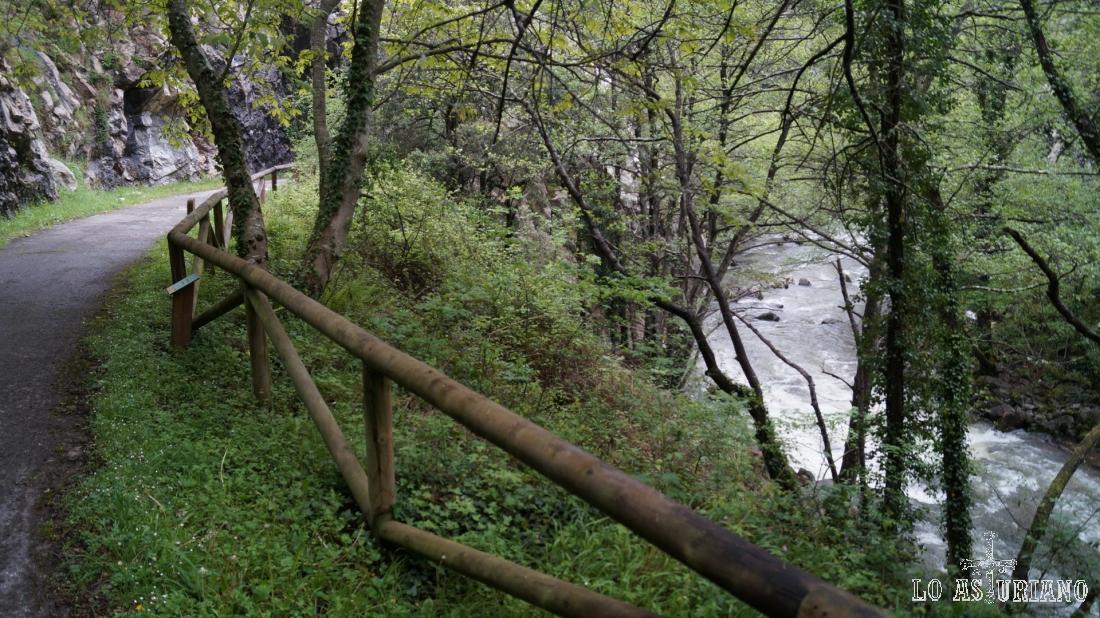 Preciosa la senda, junto al río.
