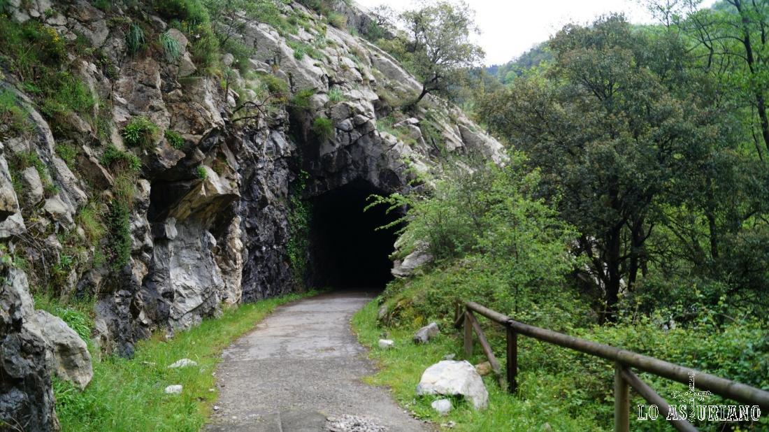 Uno de los varios túneles en esta antigua vía férrera carbonera.