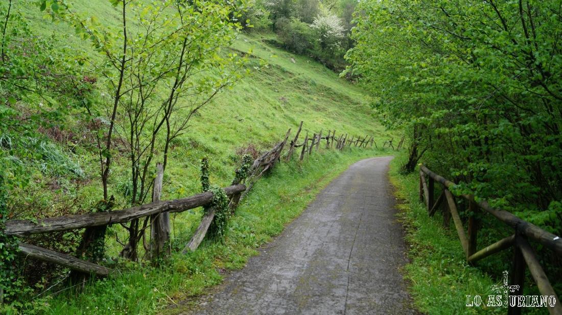 Verdísimos paisajes primaverales en el concejo de Teverga.