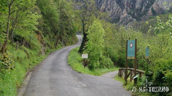 A la derecha la senda del oso y a la izquierda, nuestra carretera que sube a Fabar.