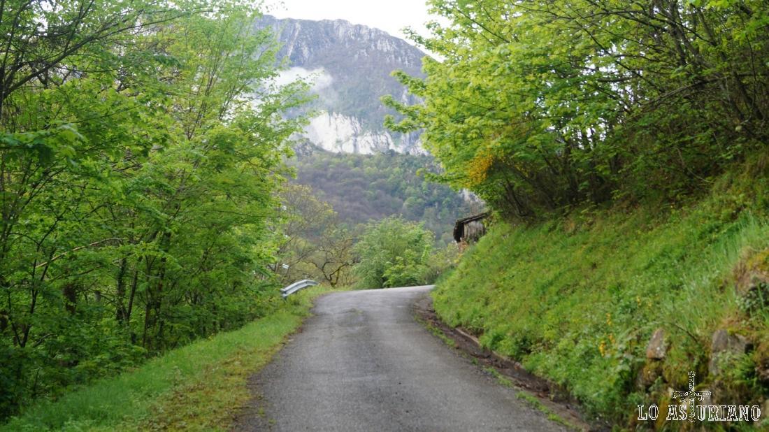 Al lado de la carretera baja el arroyo Valdemoro.