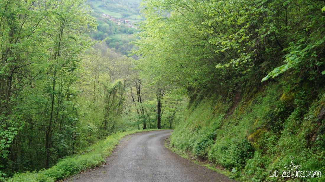 El verde se agarra y coloniza completamente este precioso rincón tevergano.