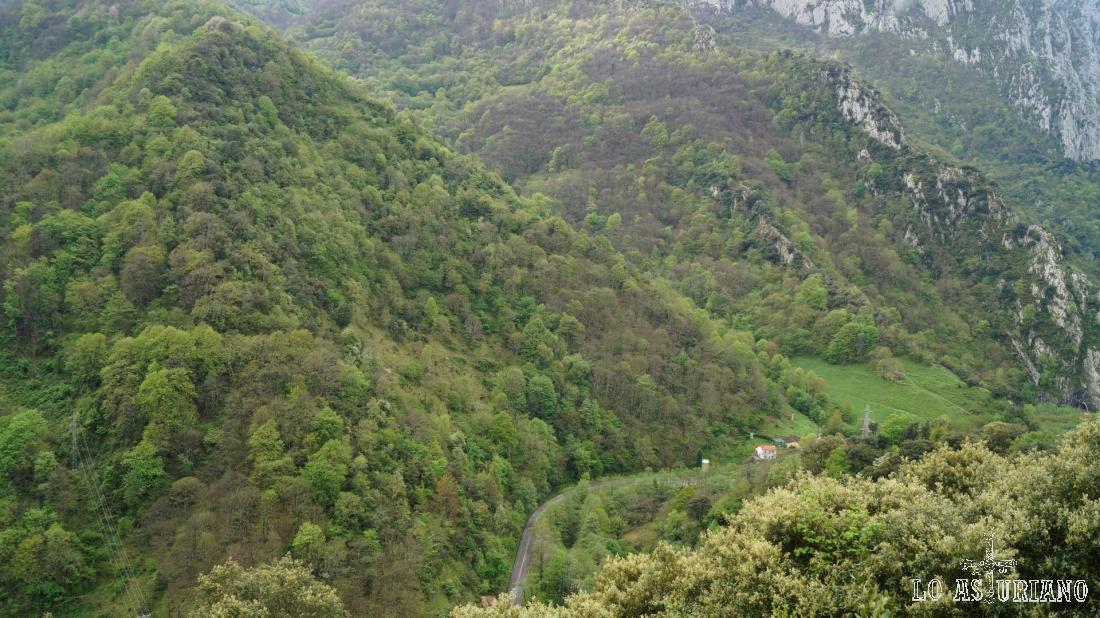 Bosques en El Castiechu. Abajo vemos Las Ventas, junto al río.