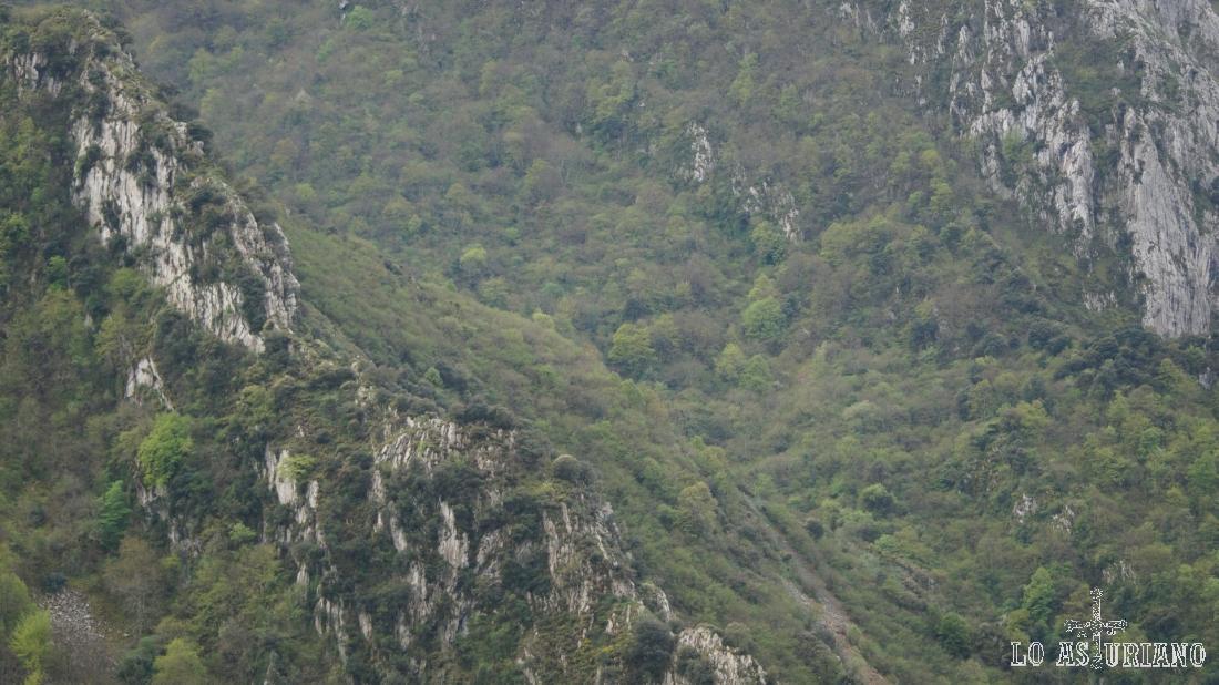 Bosques y laderas adyacentes, donde a veces se ven osos en primavera.