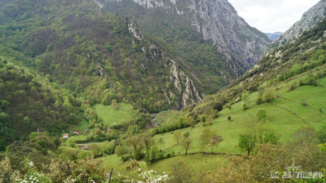 Las praderas verdes del entorno de Fabar, Teverga.