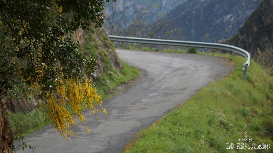 La estrecha y poquísimo transitada carretera Las Ventas-Fabar.