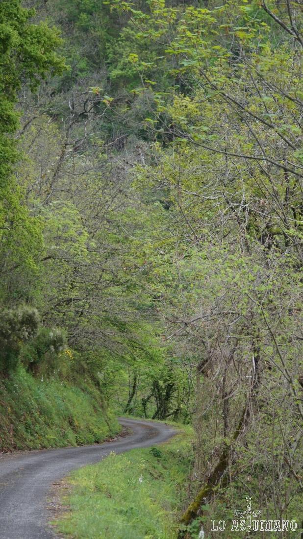Chino chano, el descenso es simplemente el disfrute del paisaje.
