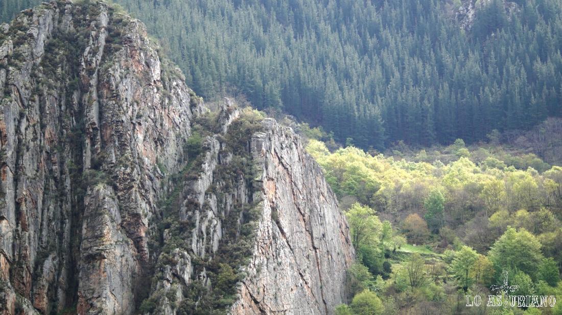 Roquedos y bosques en Teverga.