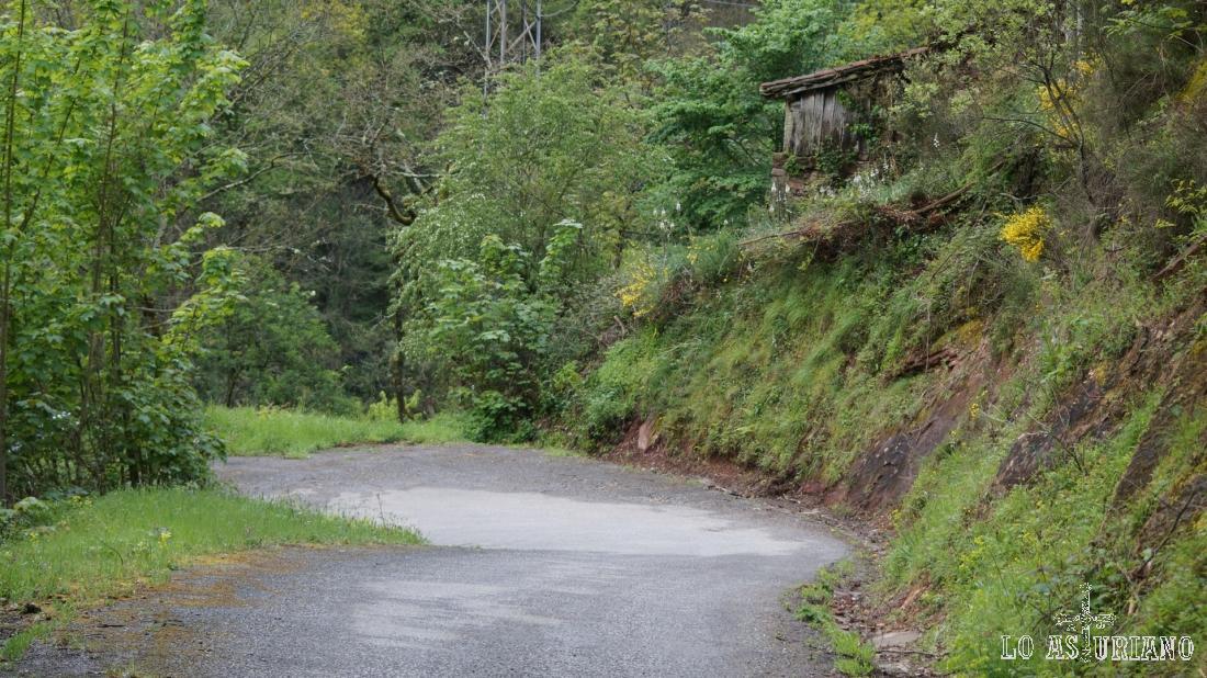 La carretera baja junto al arroyo Valdemoro.