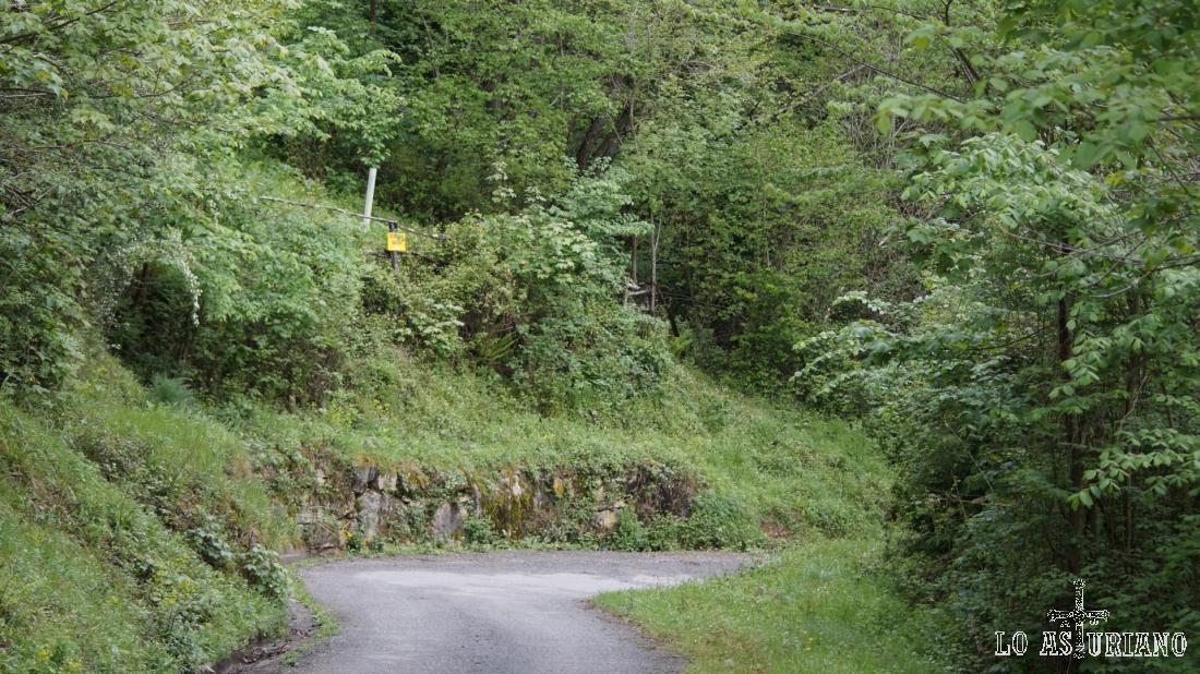 El letrero amarillo nos indica la presencia de un grupo de colmenas.