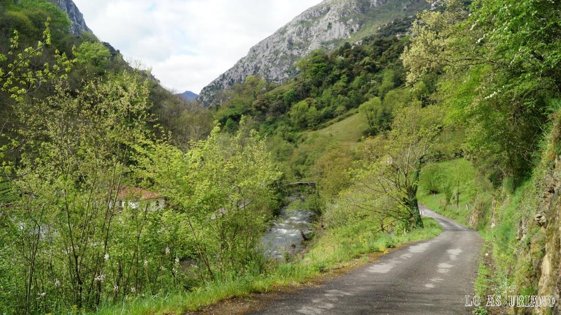 Vemos ya de nuevo el río Teverga.