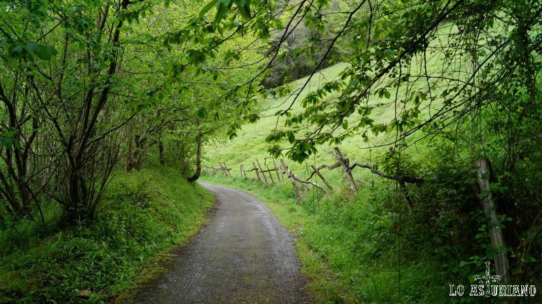 Los praus, que siguen hasta Fabar, por estas empinadas laderas.