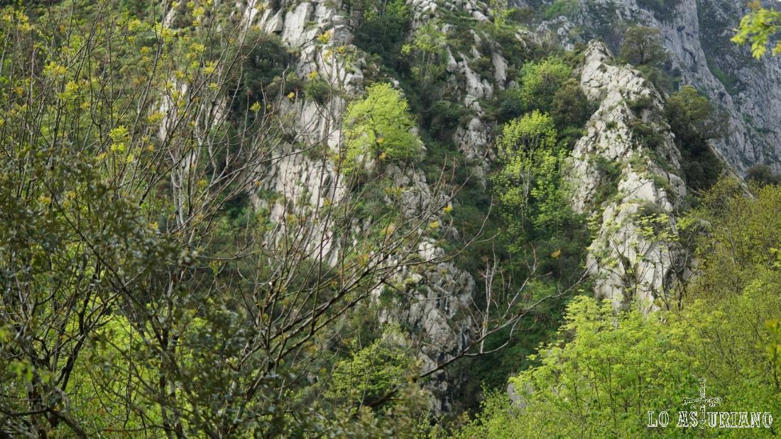 Las primeras laderas, empinadísimas, de la sierra de Sobia.
