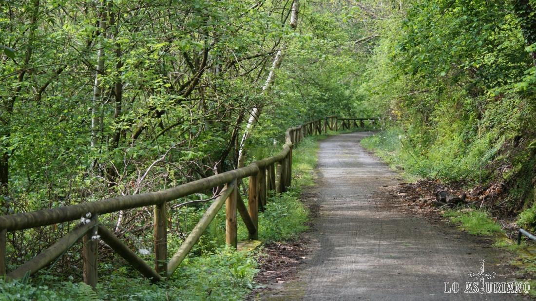 La baranda de madera acompaña la senda durante muchos kilómetros de la misma.