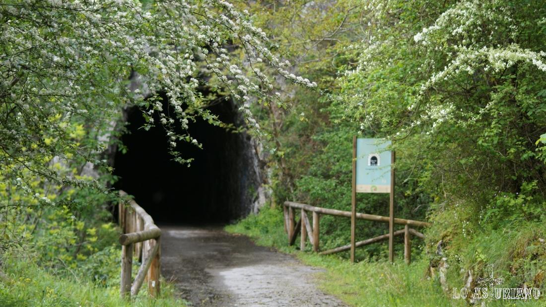 Este túnel tiene 300 metros, según la pancarta.