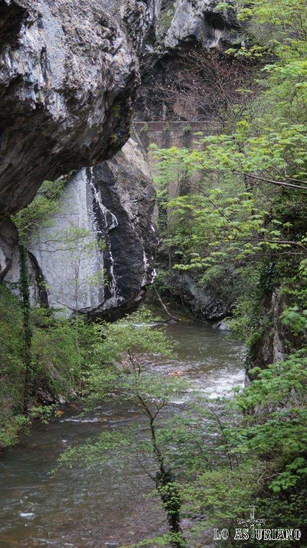 Rocas y agua, en el espectacular desfiladero.