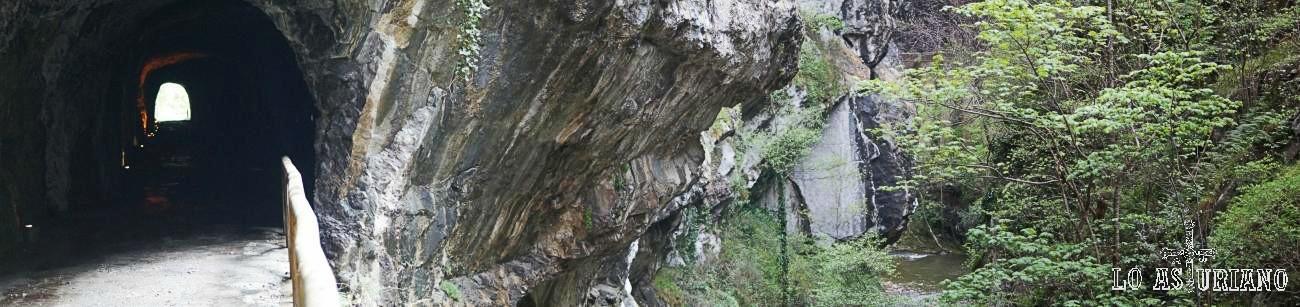 Panorámica del tunel en la senda del oso, junto al río Teverga.
